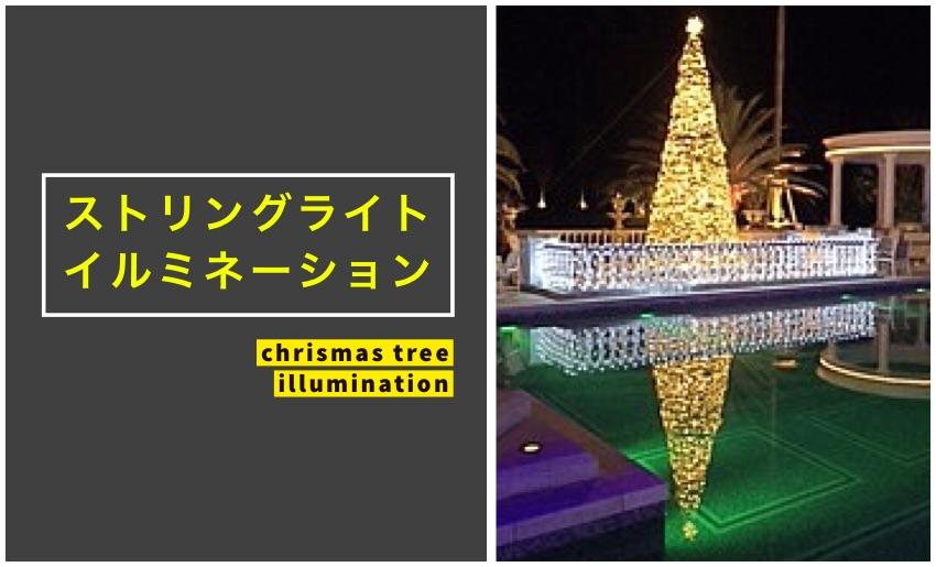 防水加工されたイルミネーションストリングライトを樹木へ飾り付け
