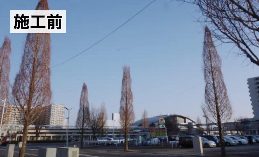 高さ10メートルの樹木へイルミネーション施工前。茨城県牛久市